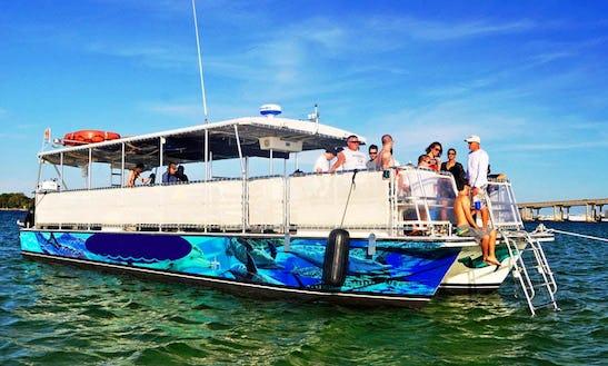 Private Crab Island Excursions And Dolphin Tour In Destin, Fl