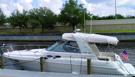 Cape Coral Skippered Chater On 31' Sea Ray 310 Sundancer For 6 Guests