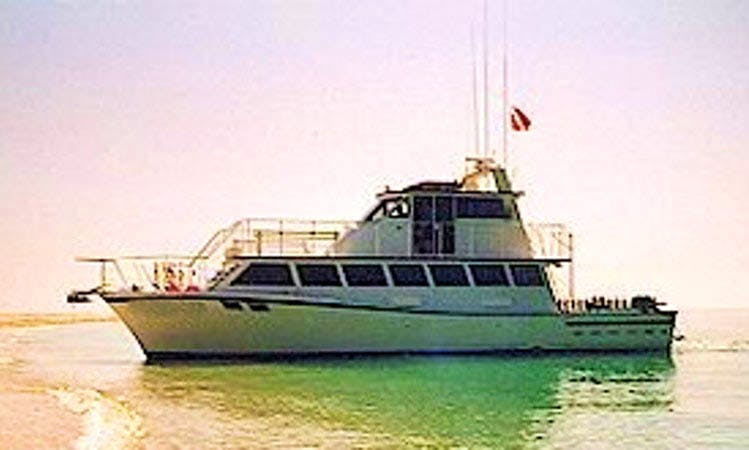 "60' M/V ""Playmate"" Diving Charter From Key West, Florida"