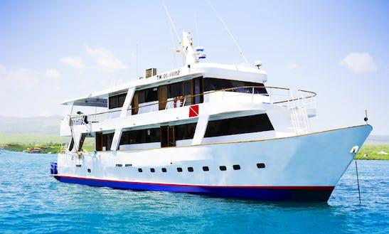 Astrea Galapagos Diving And Naturalist Cruise In Puerto Ayora