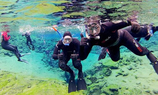 Enjoy Snorkel Tour At Isla Todos Santos, Ensenada In Baja California, Mexico