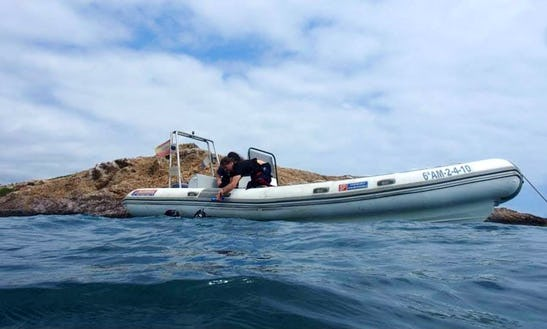 Join Our Diving Trips And Scuba Diving Courses In Carboneras, Spain
