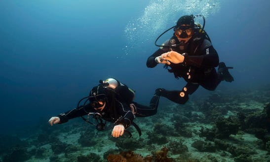 Enjoy An Unforgettable Diving Experience In Eilat, Israel