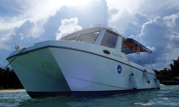 """""""Manta Ray"""" Diving Trips & Courses in Andaman"""