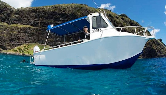Diving Trips & Courses On Lord Howe Island