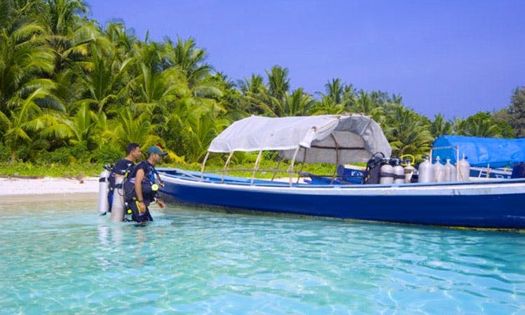 """""""Dunghis"""" Diving Trips & Courses in Andaman"""