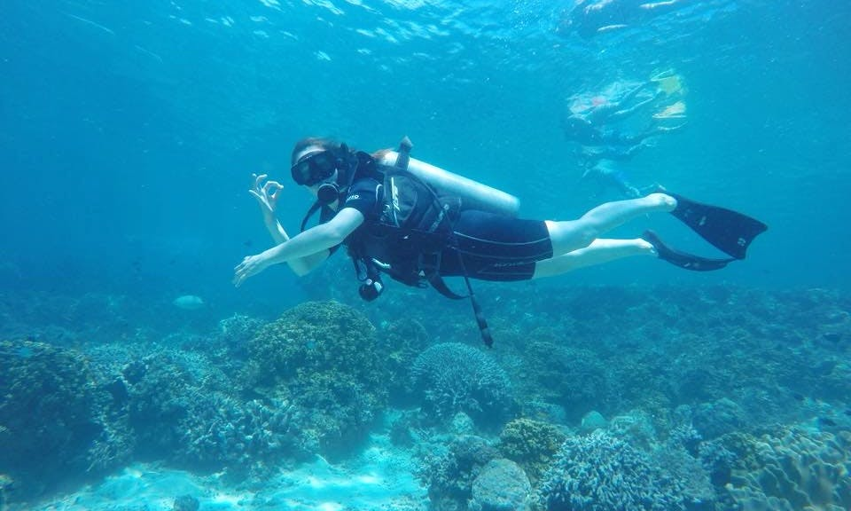 Discover the world of scuba diving in Gerokgak, Bali