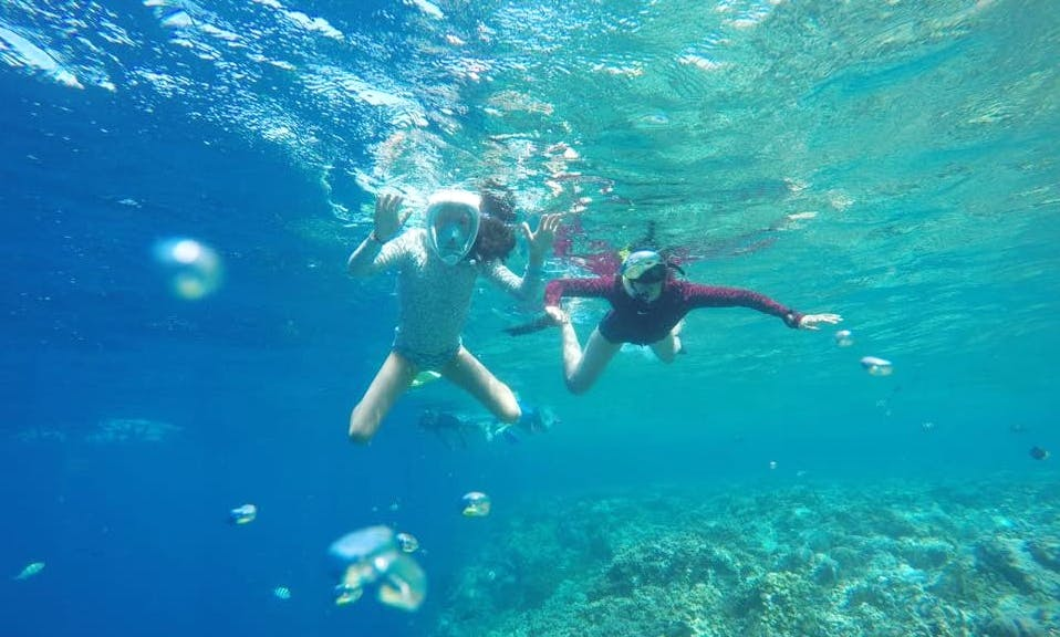 Enjoy beautiful snorkeling experience in Gerokgak, Bali