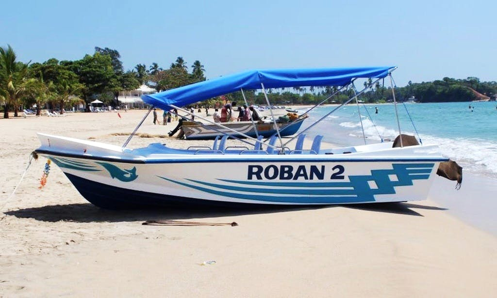 Diving Boat Trips in Trincomalee