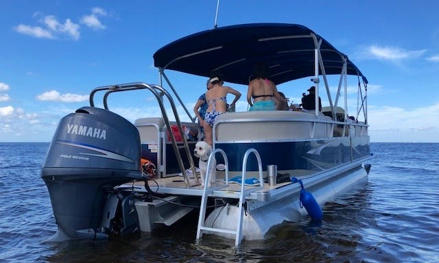 Nice Large Deck Space Pontoon for a Large Fun Family (Special $285 weekdays, exclude Holidays)