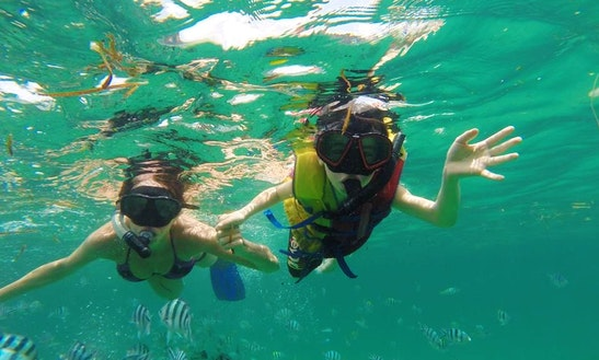 Discover The Beauty Of Underwater Life With Snorkeling In Denpasar, Bali