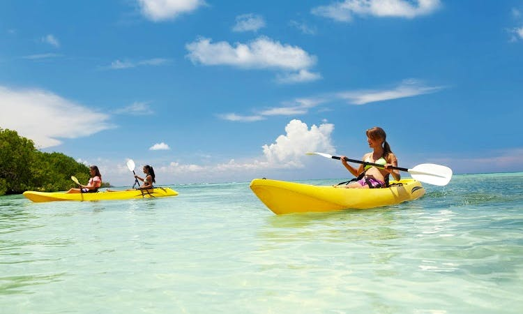 Kayaks, Canoes and Pedal Kayaks for Rent in George Town, Cayman Islands