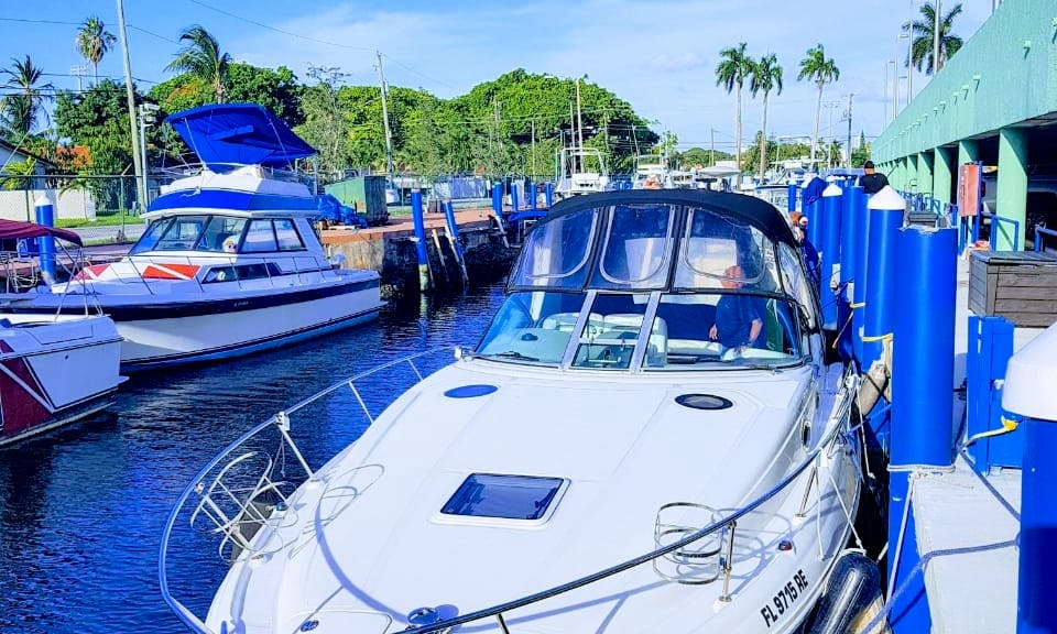 Charter 32' Sea Ray Sundancer Motor Yacht In Miami, Florida
