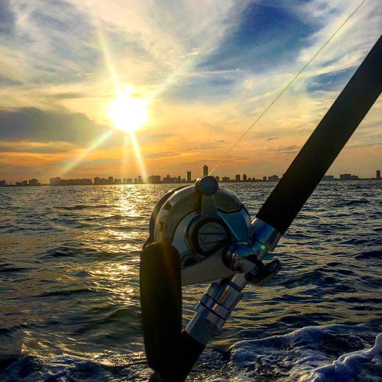 Fishing Rod against Miami Backdrop