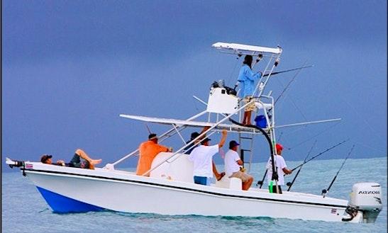 Local Fishing Boat: Barracuda 2 - Starting At $500!