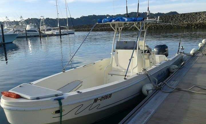 Local Fishing Boat: Marlin Mania - Full Day $650