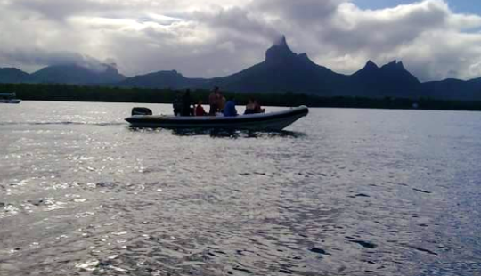 Exciting Dolphin Tour In Rivière Noire, Mauritius