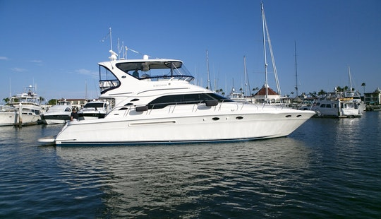 Sea Ray 560 Luxury Motoryacht