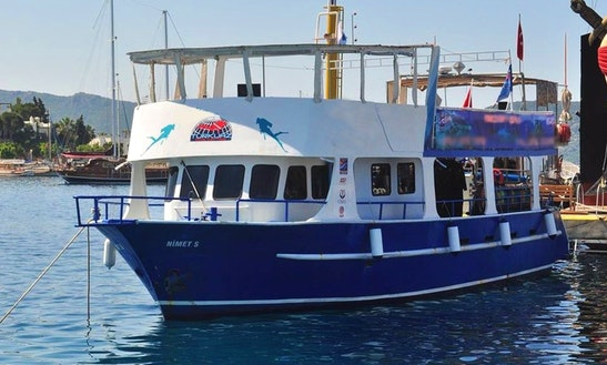 Scuba Diving Trip & Courses In Muğla