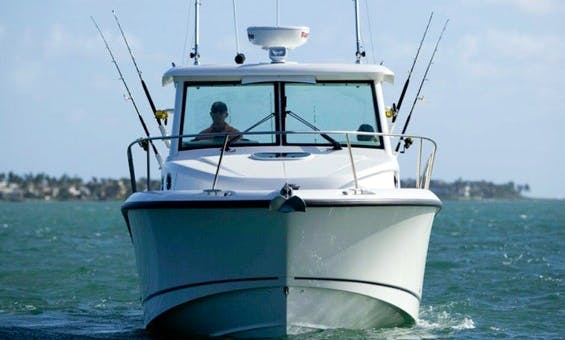 2017 Boston Whaler 315 Conquest Fishing Charter in Jersey City