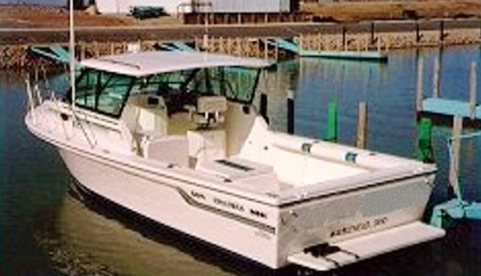 30' Baha Sportfisherman Charter Boat Located At Lakeside Marblehead, Oh