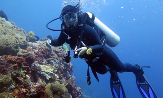 Go Diving With Us In Bali, Indonesia