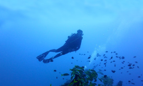 Scuba Diving Trip In Mauritius, The Paradise Island