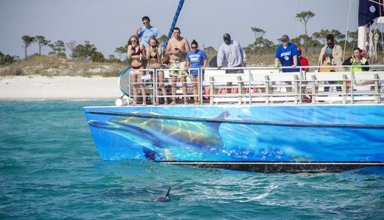 Panama City Beach - Catamaran Dolphin Cruises