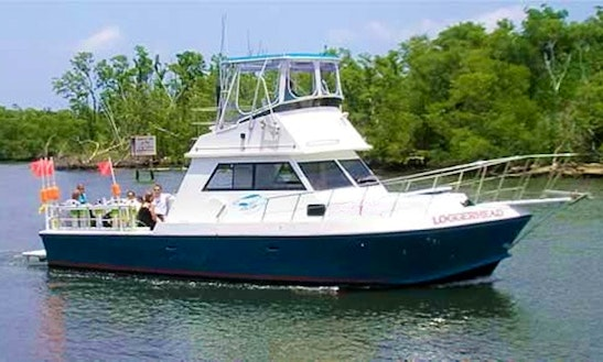 Diving Charter In Boynton Beach, Florida