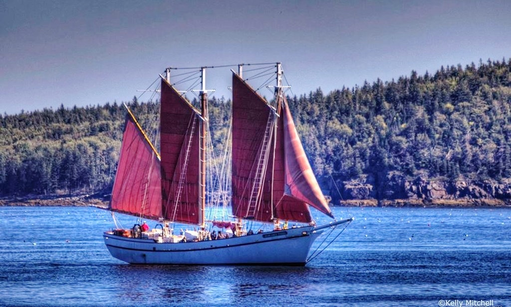 Boat Cruise in Bar Harbor, Maine
