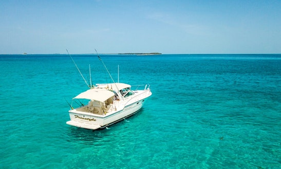 The Best Deep Sea Fishing Trip On 38' Tiara Sportfisher Yacht In Nassau