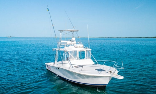 Fishing Trip On 32' Luhrs Open Sportfish Yacht In Nassau, New Providence