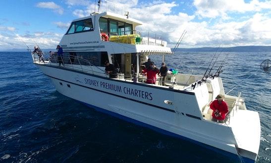 'premium' Deep Sea Fishing Charter In Cronulla, New South Wales