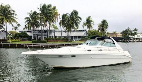 Sea Ray Sundancer Yacht Rental In Fort Lauderdale Florida