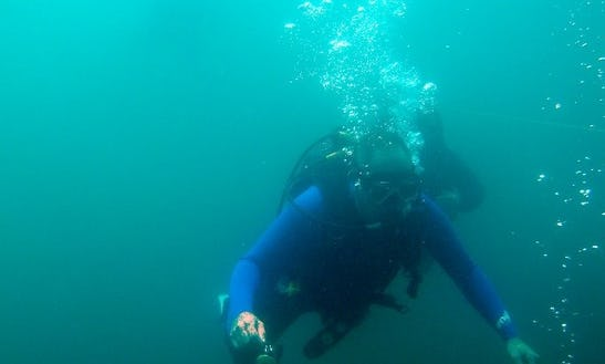 Book The Open Water Diving In Rayton, South Africa