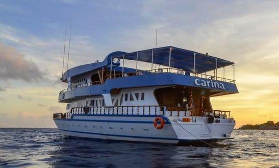 Book A Scuba Diving Vacation In Male, Maldives