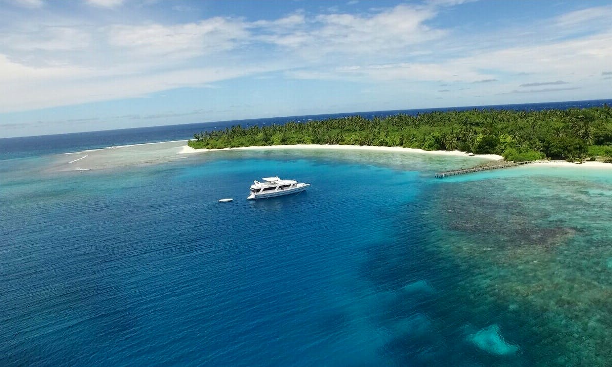 Dhinasha Liveaboard - Surfing and Diving Holiday in Maldives