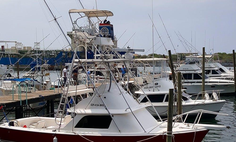 Luxury Bertram 31 Sport Fishing Charter in Port of San Jose, Guatemala   Day charters  All-inclusive Plans