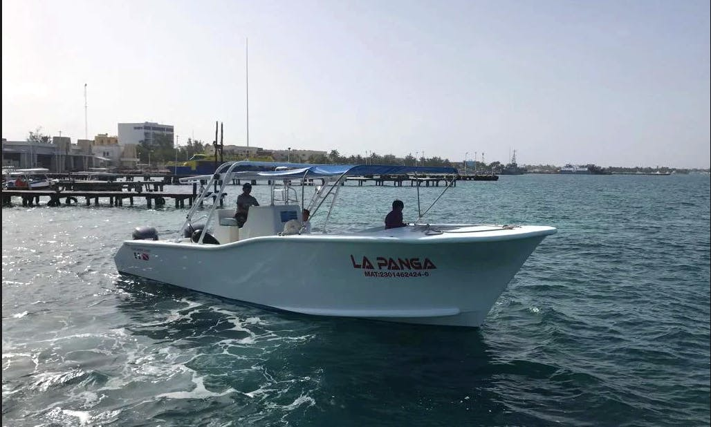 Splendid Boat Trip for up to 18 People in Contoy Island and Isla Mujeres