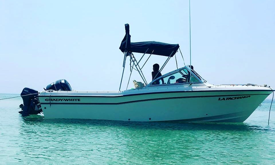 23 ft Grady White Center Console Rental in Veracruz, Mexico