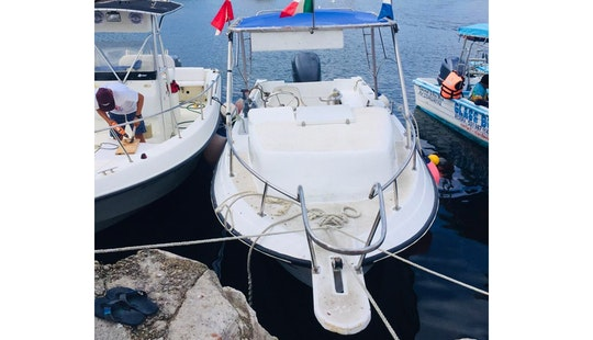 Fishing Charter With All Fishing Equipment, License, And Bait Included In San Miguel De Cozumel