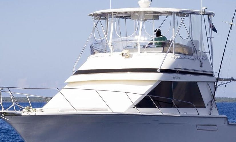 Go fishing with this amazing sport fisherman charter in Punta Cana