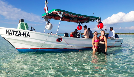Wonderful Scuba Diving Adventure In  Cozumel, Mexico!
