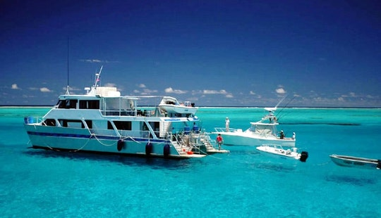 Lagoon Explorer Coral Sea Sportfishing Charter