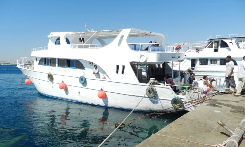 The Best Underwater Adventures In Red Sea Governorate, Egypt!