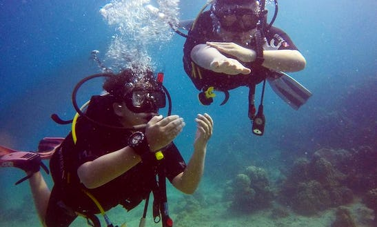 Diving Trip With Dive Master Guide In Perhentian Islands, Malaysia