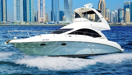 42ft Luxury Yacht Sea Ray In Marina Dubai