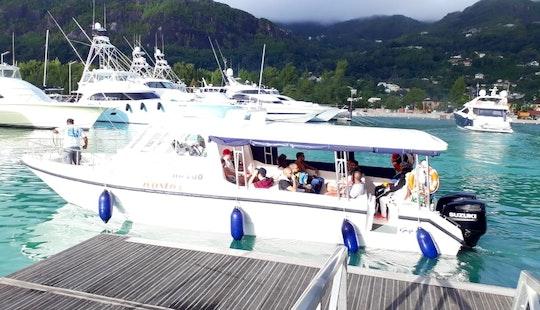 Twin Suzuki Powered Tour Boat In Anse Etoile