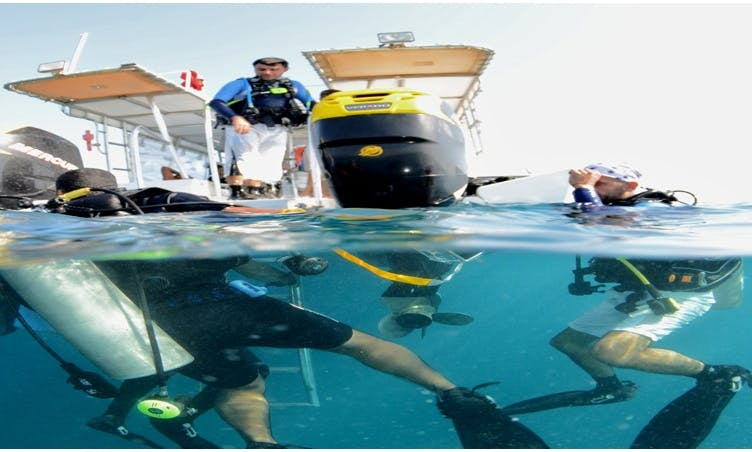 Learn To Scuba Dive in Hawalli Governorate, Kuwait