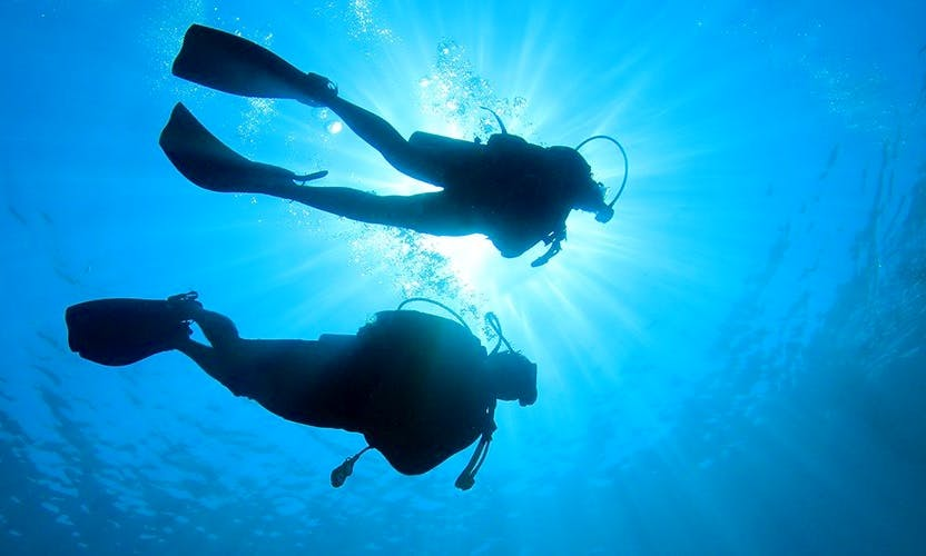 Amazing Diving Trip with Guide in Malvan, India